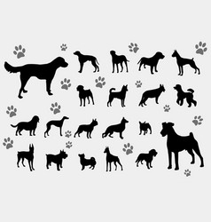 dogs silhouettes collection vector image