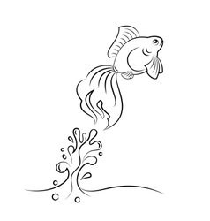 goldfish jumping vector image