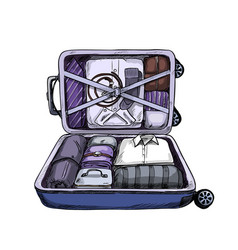 Neat opened business suitcase ready to journey vector