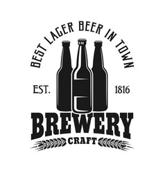 brewery emblem with three bottles isolated vector image