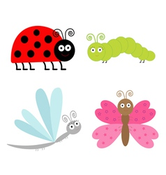 cute cartoon insect set ladybug butterfly vector image