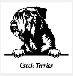 Czech terrier - peeking dogs - breed face head vector