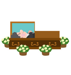 Deceased lying in a coffin cartoon characters vector