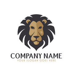 fierce lion logo vector image
