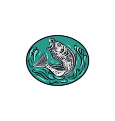 Rockfish Jumping Color Oval Drawing vector