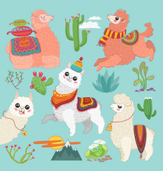 Set of cute alpaca lama and desert vector