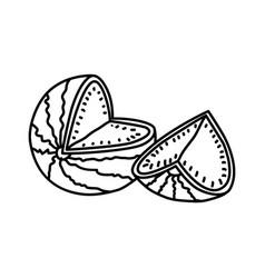 watermelon fruit icon design sign vector image