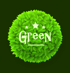 green leaves circle frame isolated on dark vector image vector image