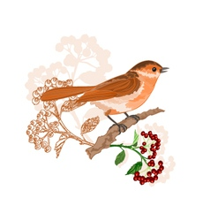 Bird on a branch with berries nature background vector