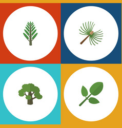 Flat icon bio set of foliage tree rosemary and vector