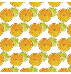 Orange and Lime fresh slices vector