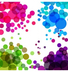 colorful bubbles vector image