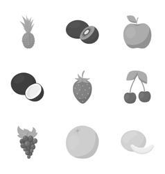 Fruits set icons in monochrome style Big vector image vector image