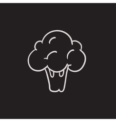 Broccoli sketch icon vector image