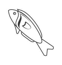 Fish organic food design vector