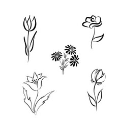 Flower set engraved floral design elements vector