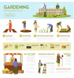 Gardening infographics template vector