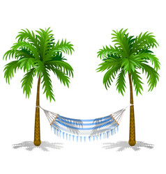 Hammock between two palm trees isolated on white vector