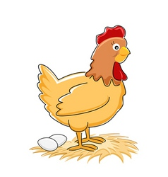 Hen with eggs vector