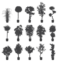 House and office plants silhouette set vector