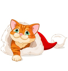 Kitten getting out from Santa Hat vector image