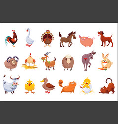Set of farm animals livestock and poultry vector