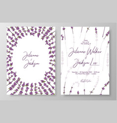 Wedding invitation with lavenders cards templates vector