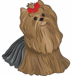 yorkie vector image vector image