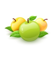 Apple fruits with green vector image vector image