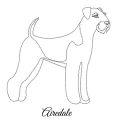 Airedale dog outline vector