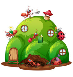 ant farm with many ants in garden vector image