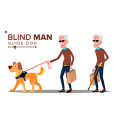 blind old man with dark glasses cane in hand and vector image