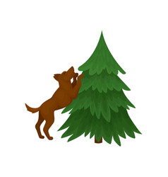 Brown dog standing on hind legs near green vector