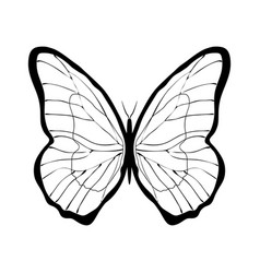 butterfly sign vector image