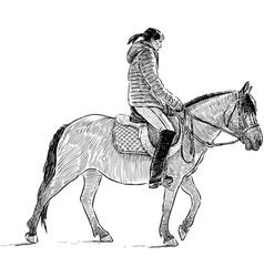 Horseback riding girl vector