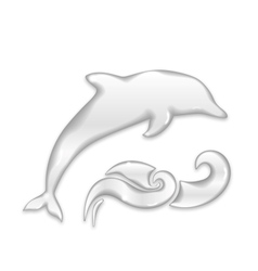 Dolphin silhouette of water drops vector image