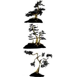 Japanese bonsai trees vector image