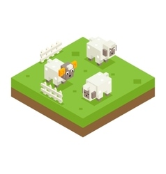 Isometric Sheep Ram Field 3d Icon Symbol Meadow vector image vector image