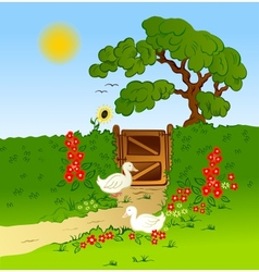 Rural fence flowers and farm geese vector image