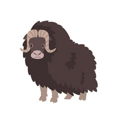 Bison arctic polar animal on vector