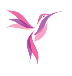 colorful hummingbird icon symbol in flat style on vector image