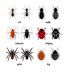 Crawling insects set - ant spider beetle vector