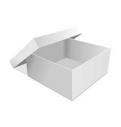 Empty paper box vector