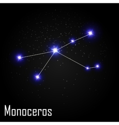 Monoceros Constellation with Beautiful Bright vector image
