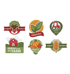 organic product isolated icons farm food vector image