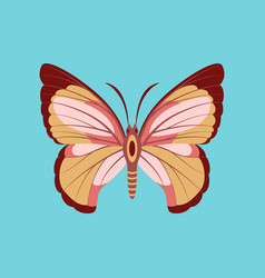 Colorful icon of butterfly isolated on blue vector