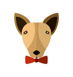 bull terrier head icon in flat design vector image vector image