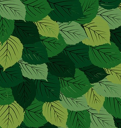 Green leaves carpet vector image vector image