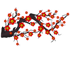 Cherry blossom for chinese new year and mid vector