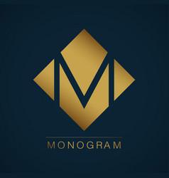 graceful monogram design vector image